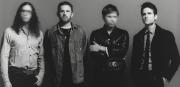 Neue Musik und Geld fuer Crew Nation-Kings Of Leon melden sich zurueck